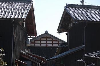 sanamiji02.JPG